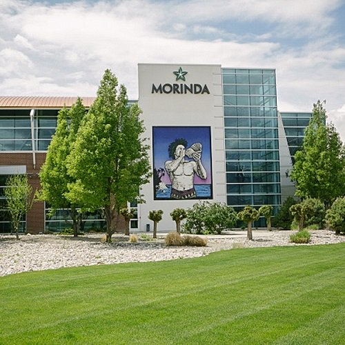 IPCS TALK ABOUT MORINDA'S EXPANDING OPPORTUNITY AND GROWTH article image