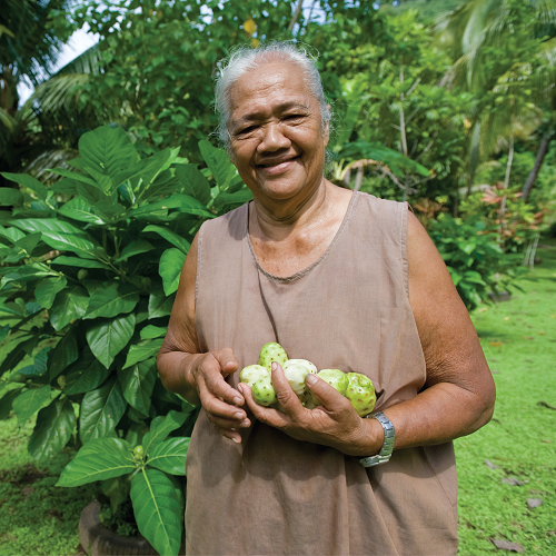 Video: Noni is one of the Earth's best ingredients article image