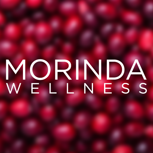 IMPROVE YOUR QUALITY OF LIFE WITH MORINDA WELLNESS article image